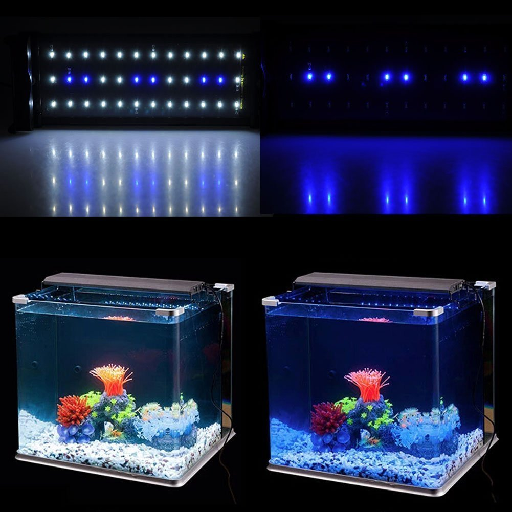 Nicrew classicled aquarium light fish tank light with for Fish tank lighting